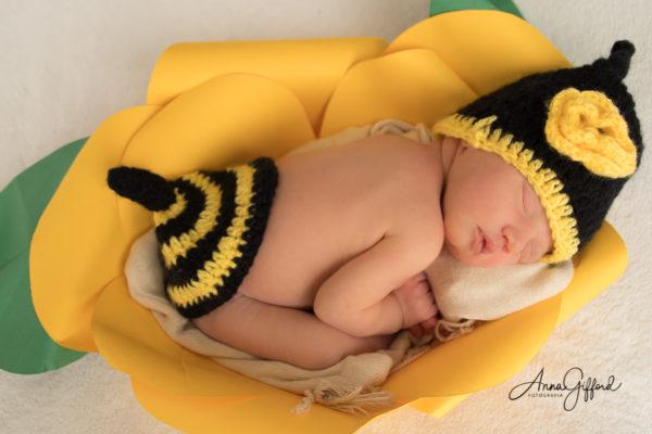 Ensaio Newborn Belo Horizonte Tradicional
