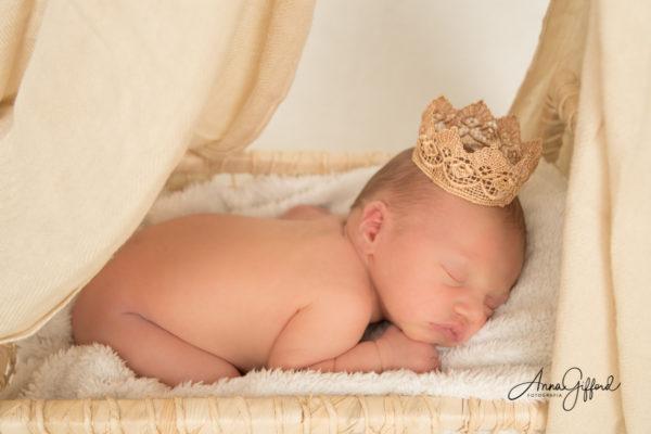 Ensaio Newborn Tradicional